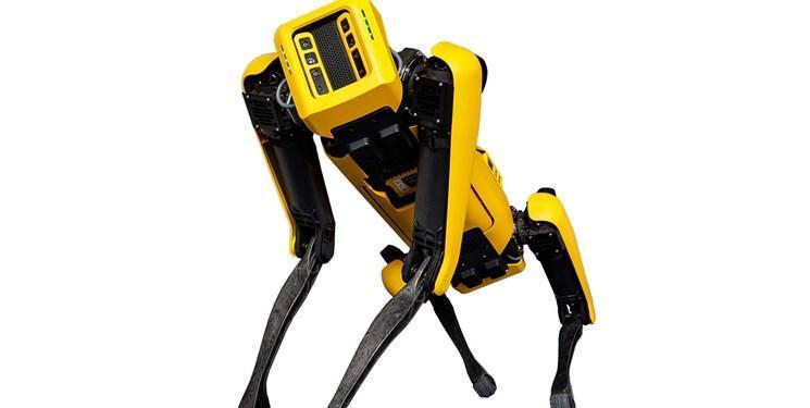 هوش مصنوعی سگ های ربات را واقعی می نماید