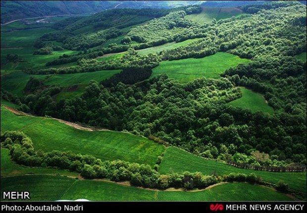 حاشیه های جنگل های هیرکانی ویلاسازی شده است