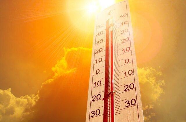 دمای استان بوشهر 50 درجه می گردد
