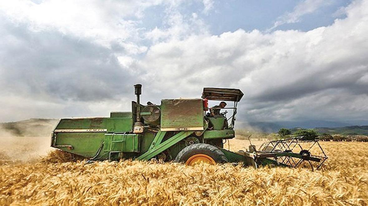 دلایل افزایش ضایعات محصولات کشاورزی در کشور چیست؟