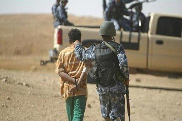 بازداشت ببر داعش در غرب بغداد
